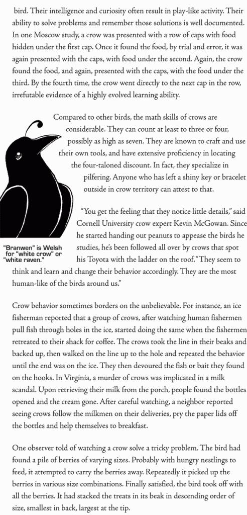 Crow Princess, Page 44